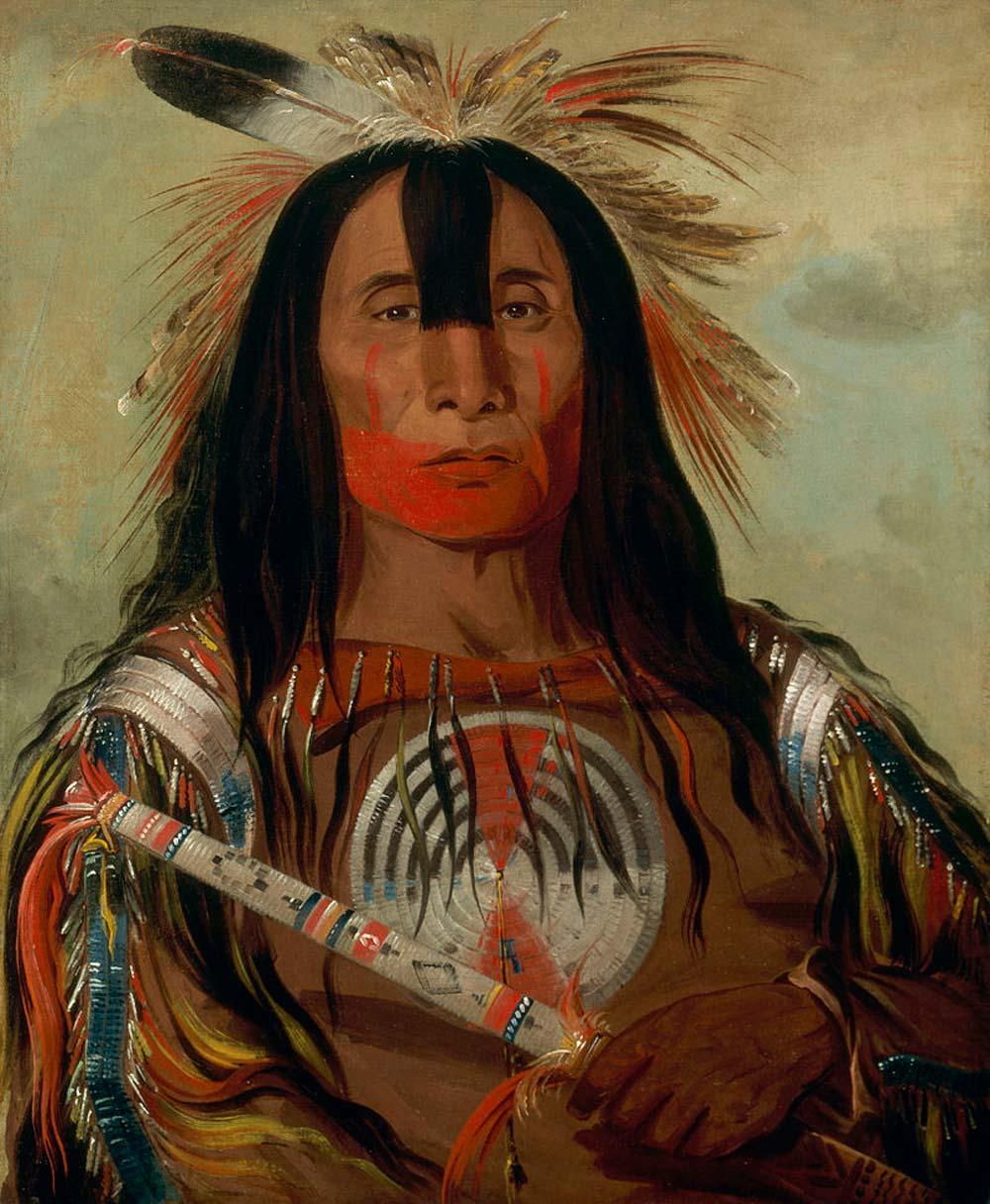 800px-George_Catlin_-_Buffalo_Bulls_Back_Fat_-_Smithsonian_resize.jpg