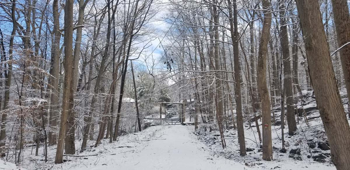 snow-at-park_resize.jpg